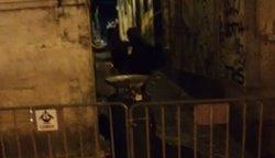 Casal amador é pego no flagra dando uma metida na rua